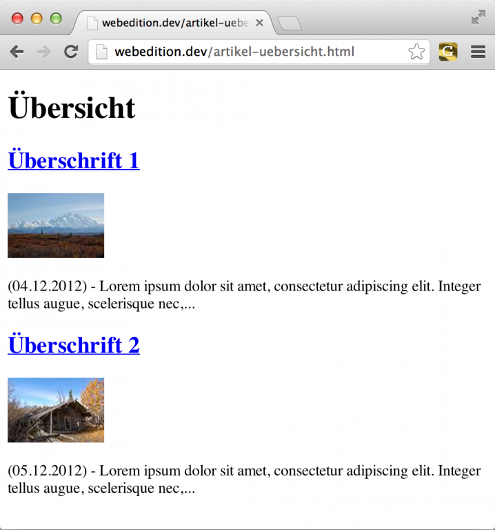 webEdition - Screenshot Frontend Artikel-Übersicht