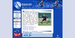 Screenshot der Webseite des VfL Bochum, verkleinert