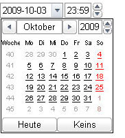 Screenshot vom neuen Input-Typ datetime-local